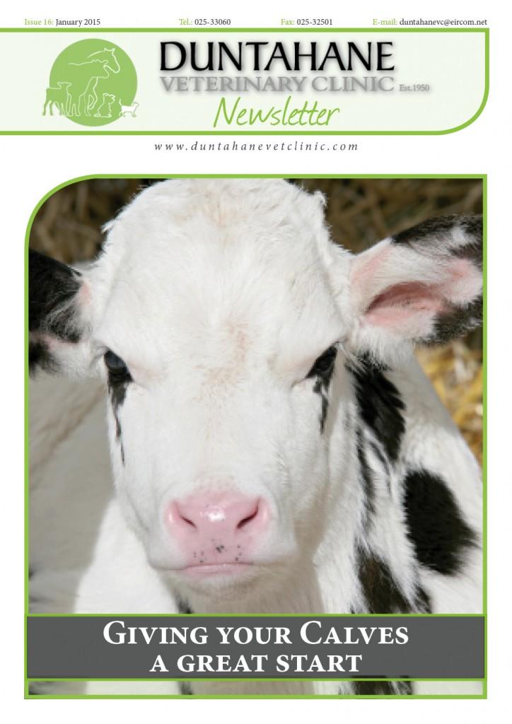 Issue 16 Jan 2015 newsletter