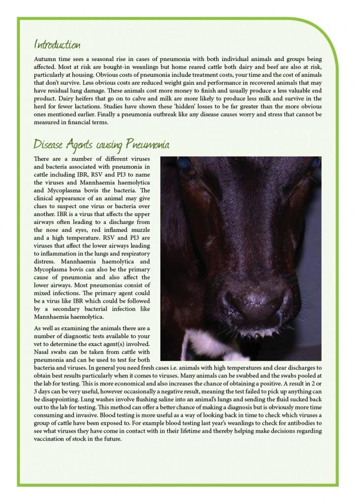 print_duntahane_issue 19 sept 15 newsletter2